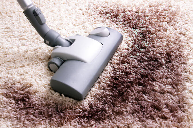 The Dirt Stuck in Your Carpet for Who Knows How Long